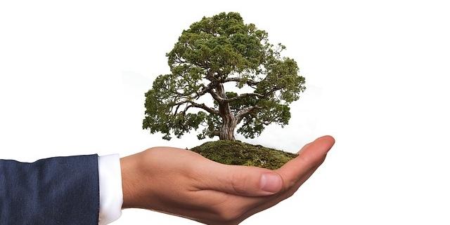 8 tips på miljövänlig städning